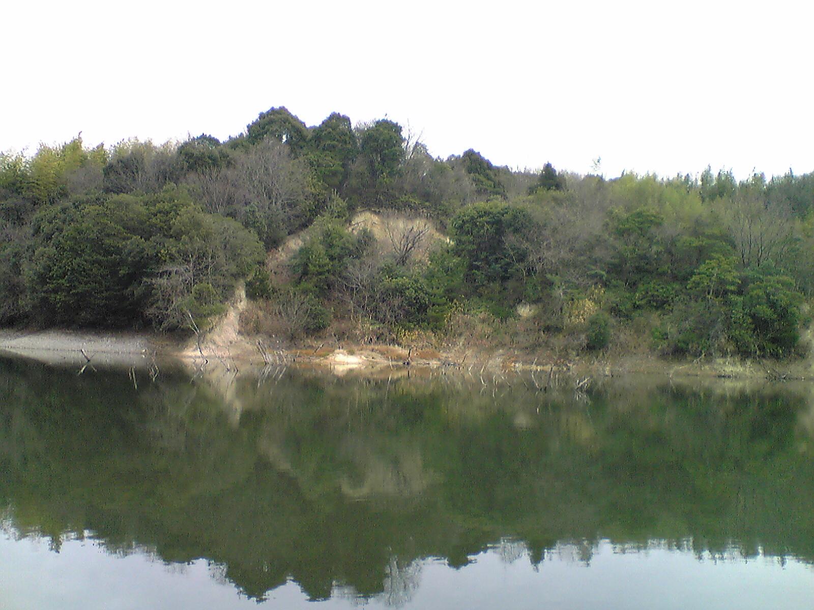Image243.jpg